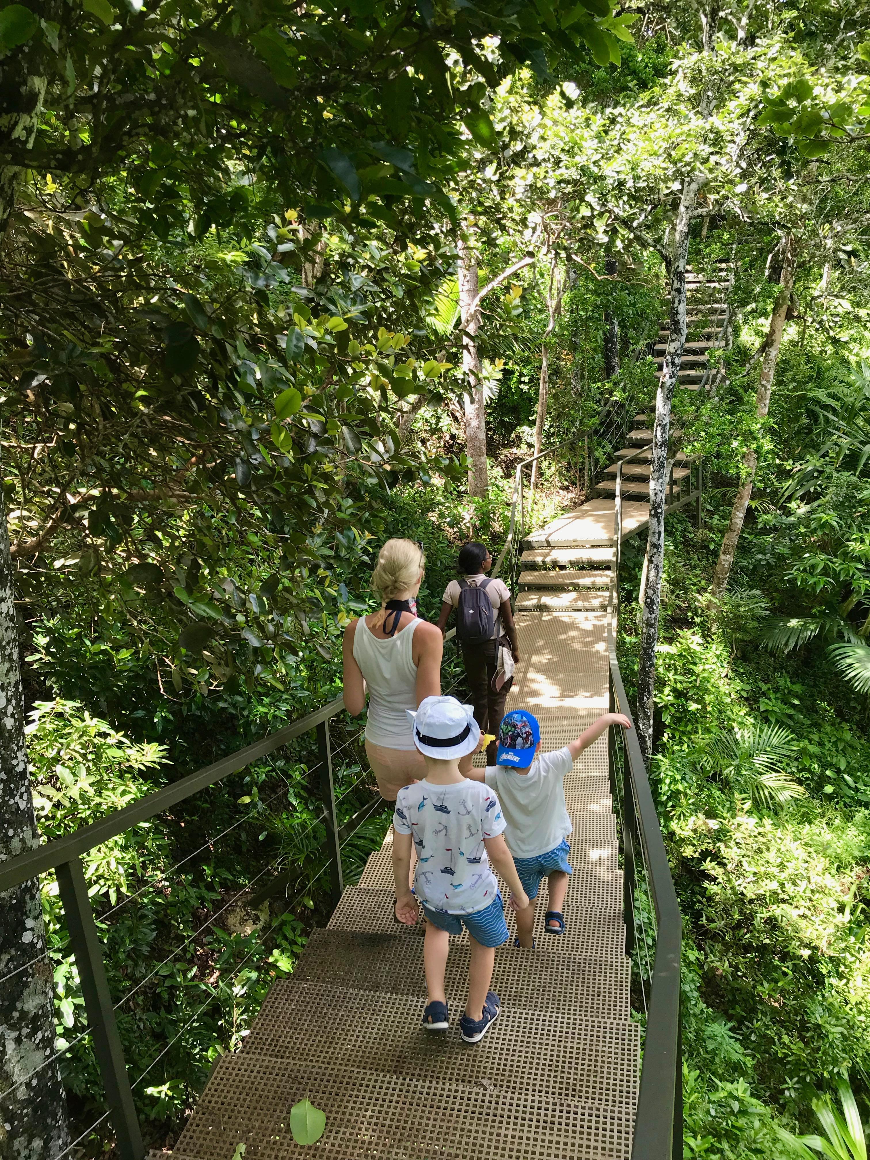 Jungle trekking with children in Mauritius