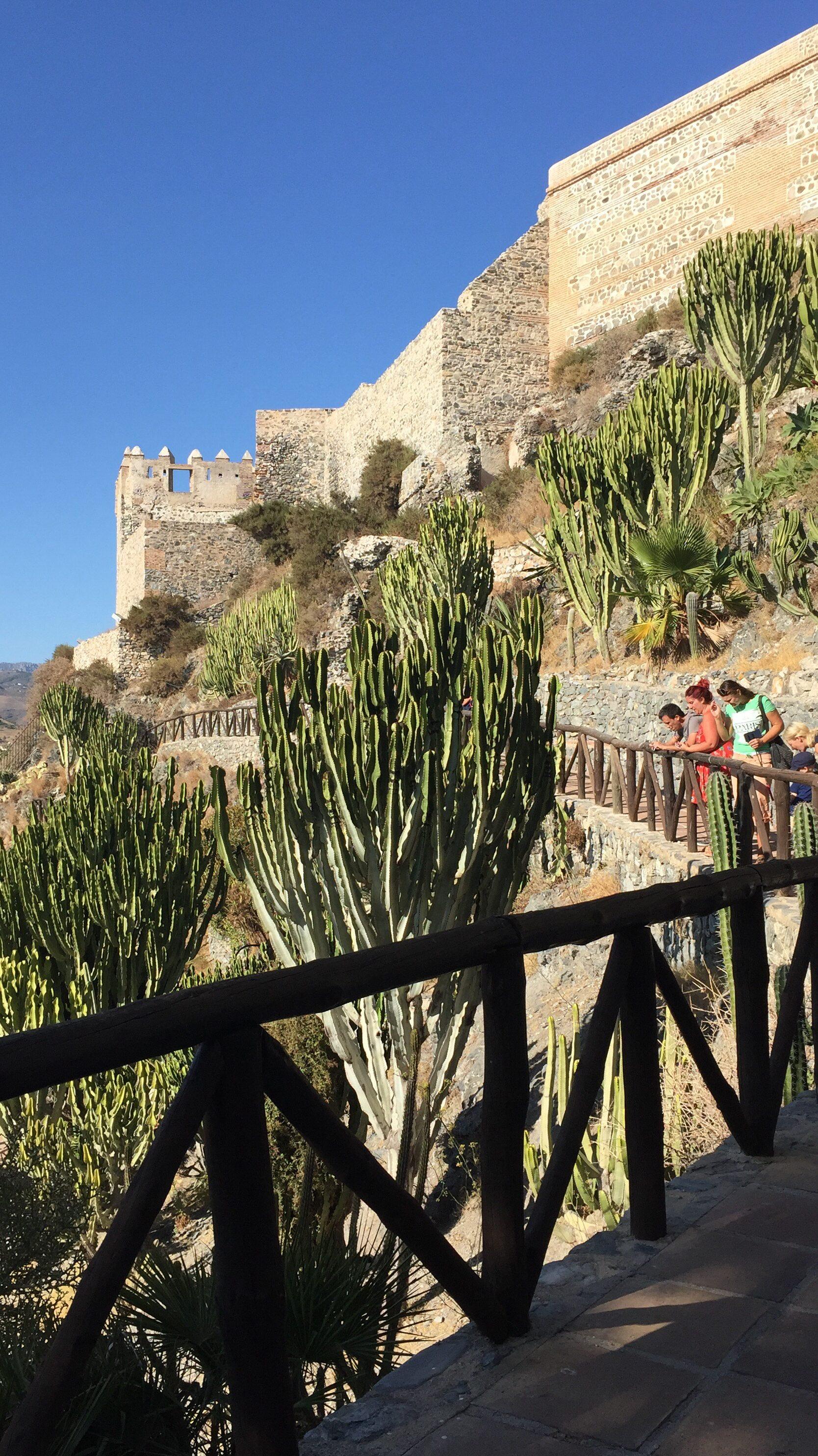 cactus garden in Almuñécar