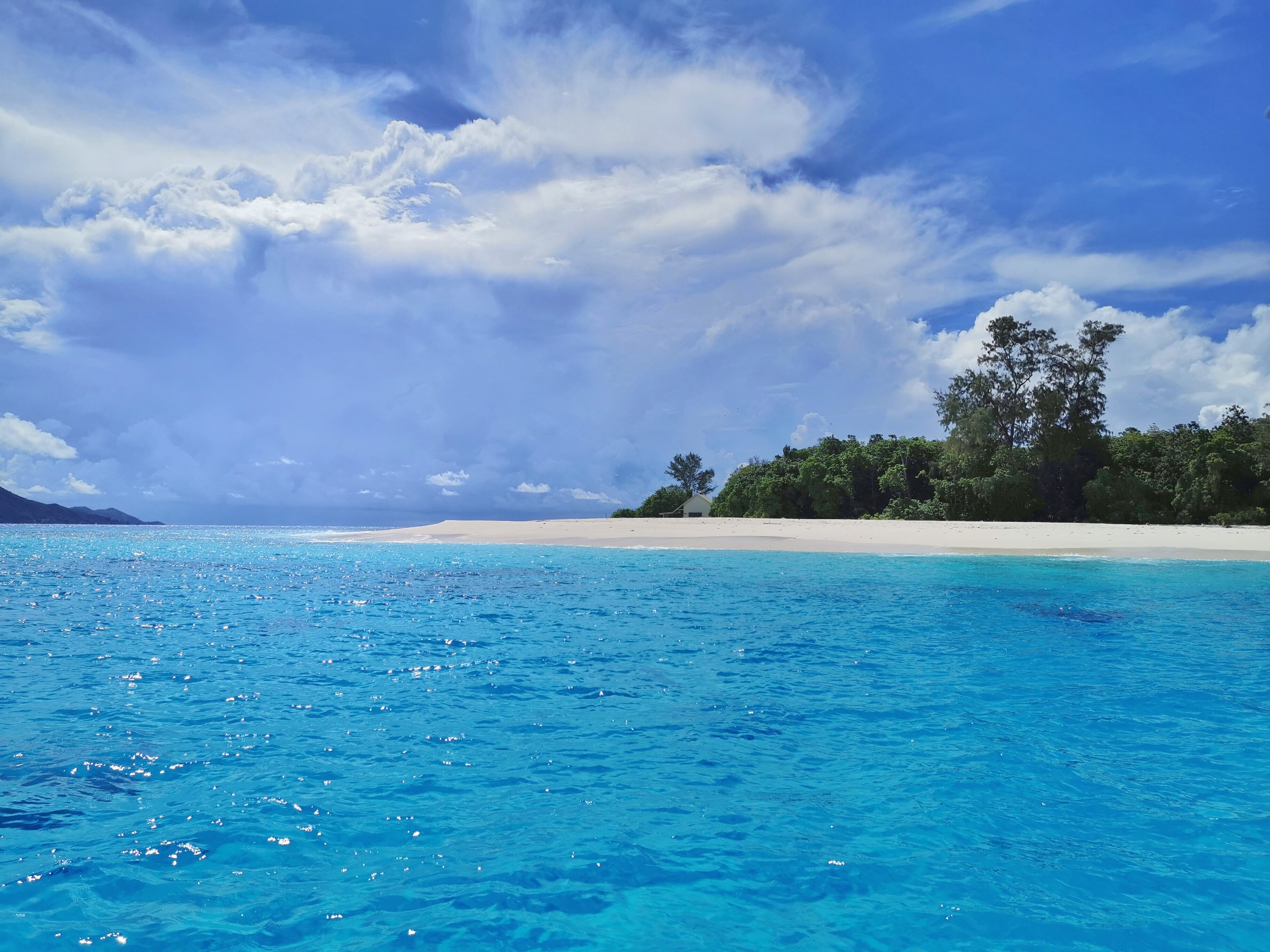 Cousin island Seychellerna tips