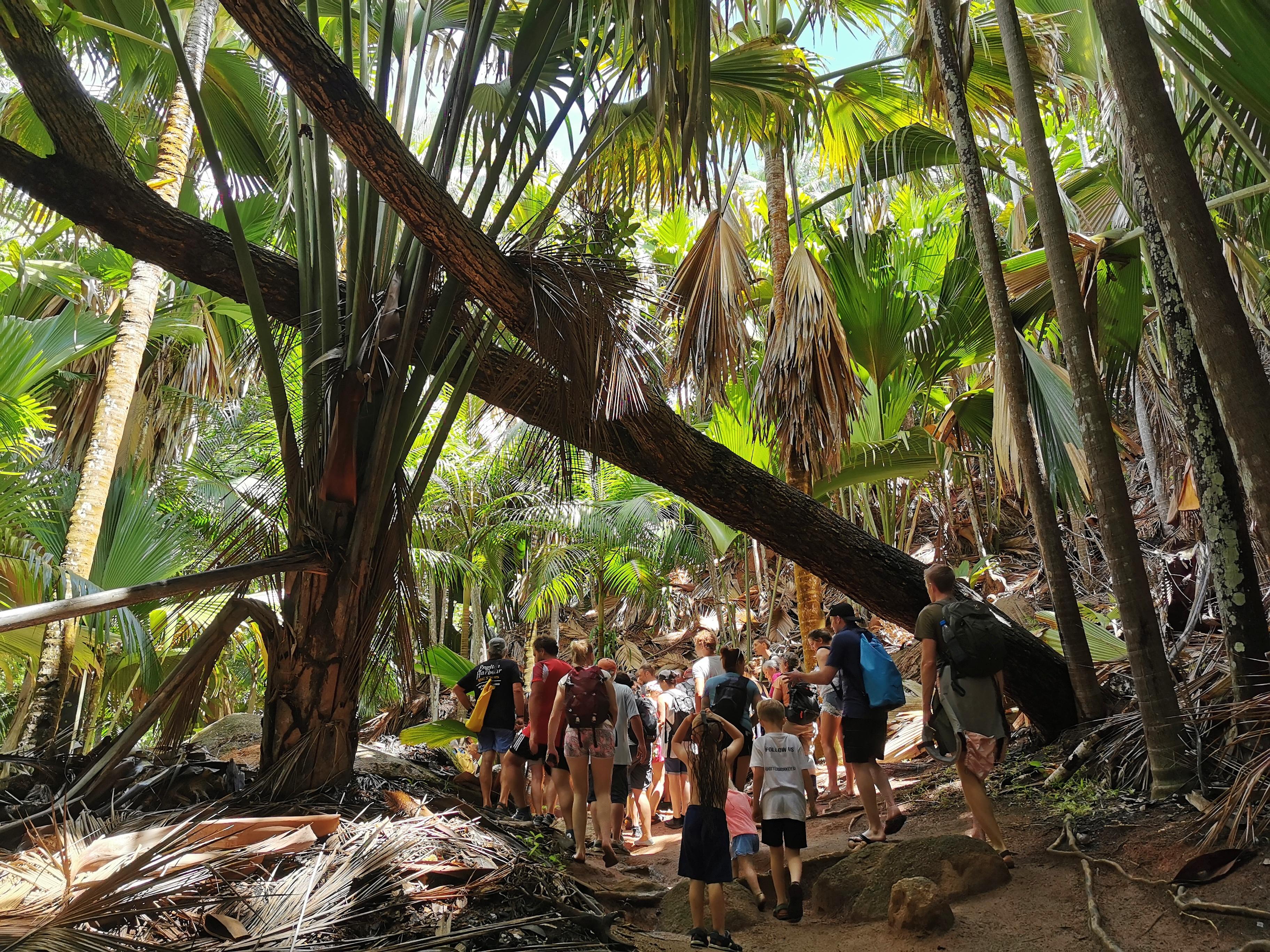 Fond Ferdinand nationalpark guidad tur
