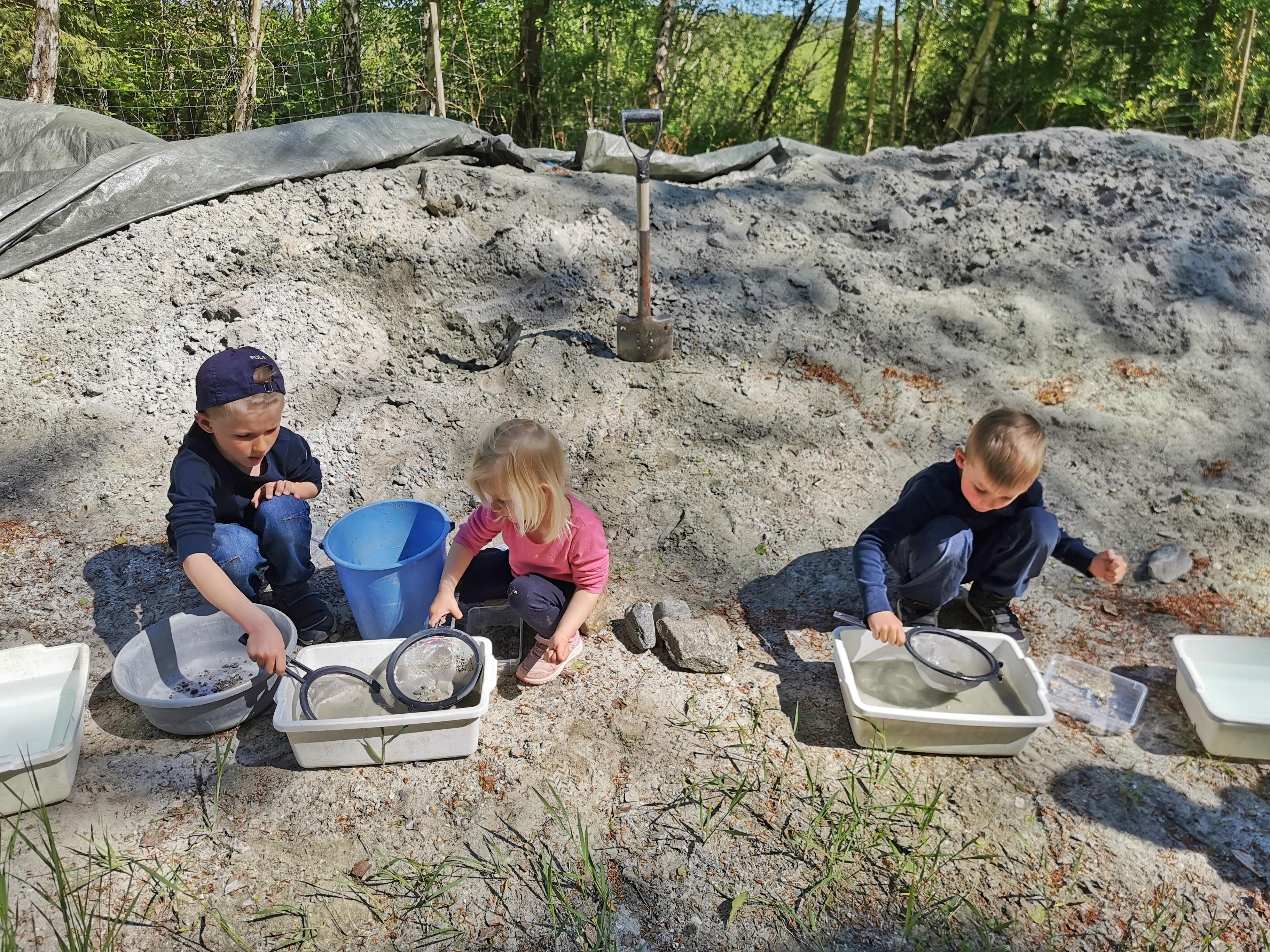 Leta fossil i Sverige