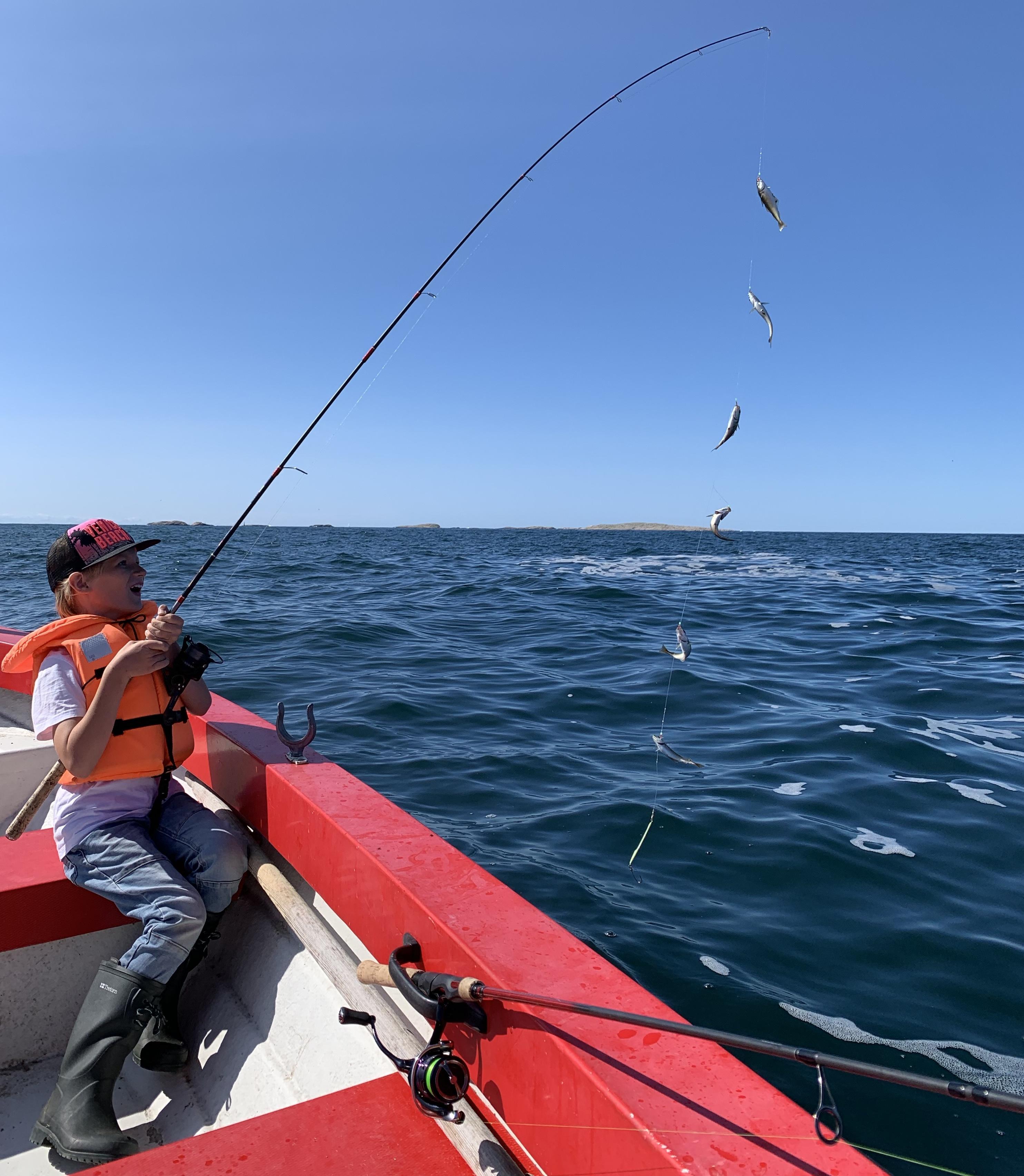 Fiske på västkusten med barn