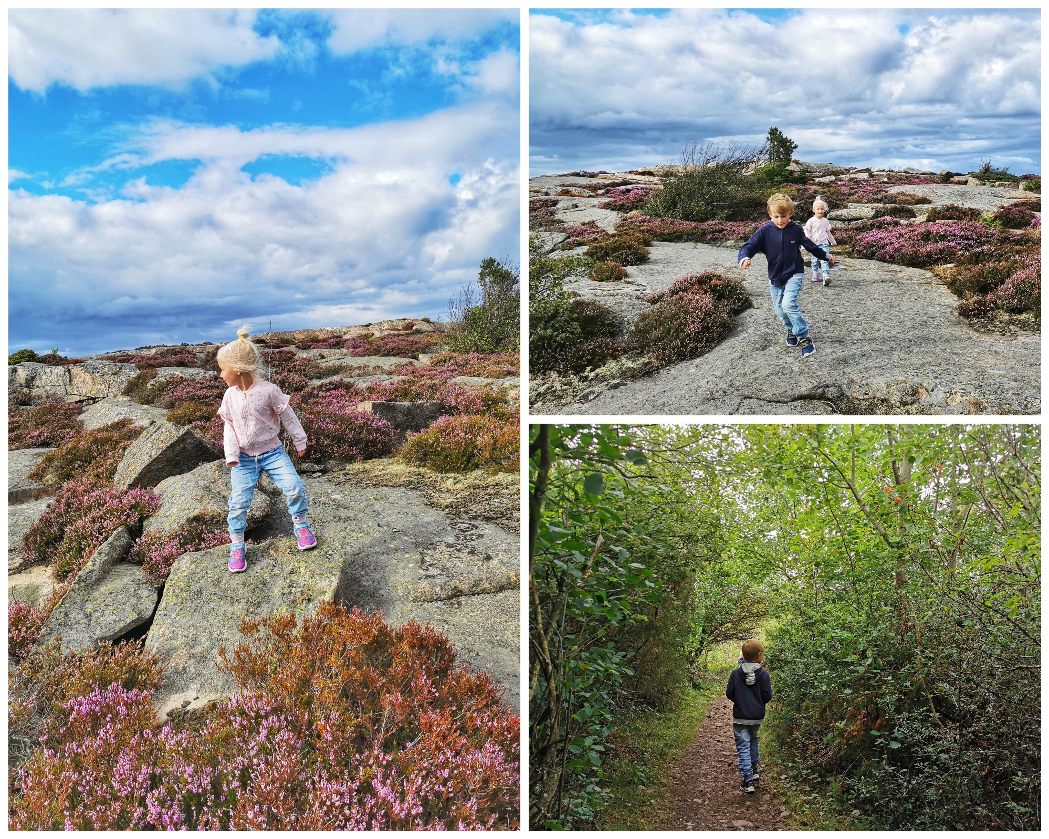Barn klippor västkusten ramsvikslandet