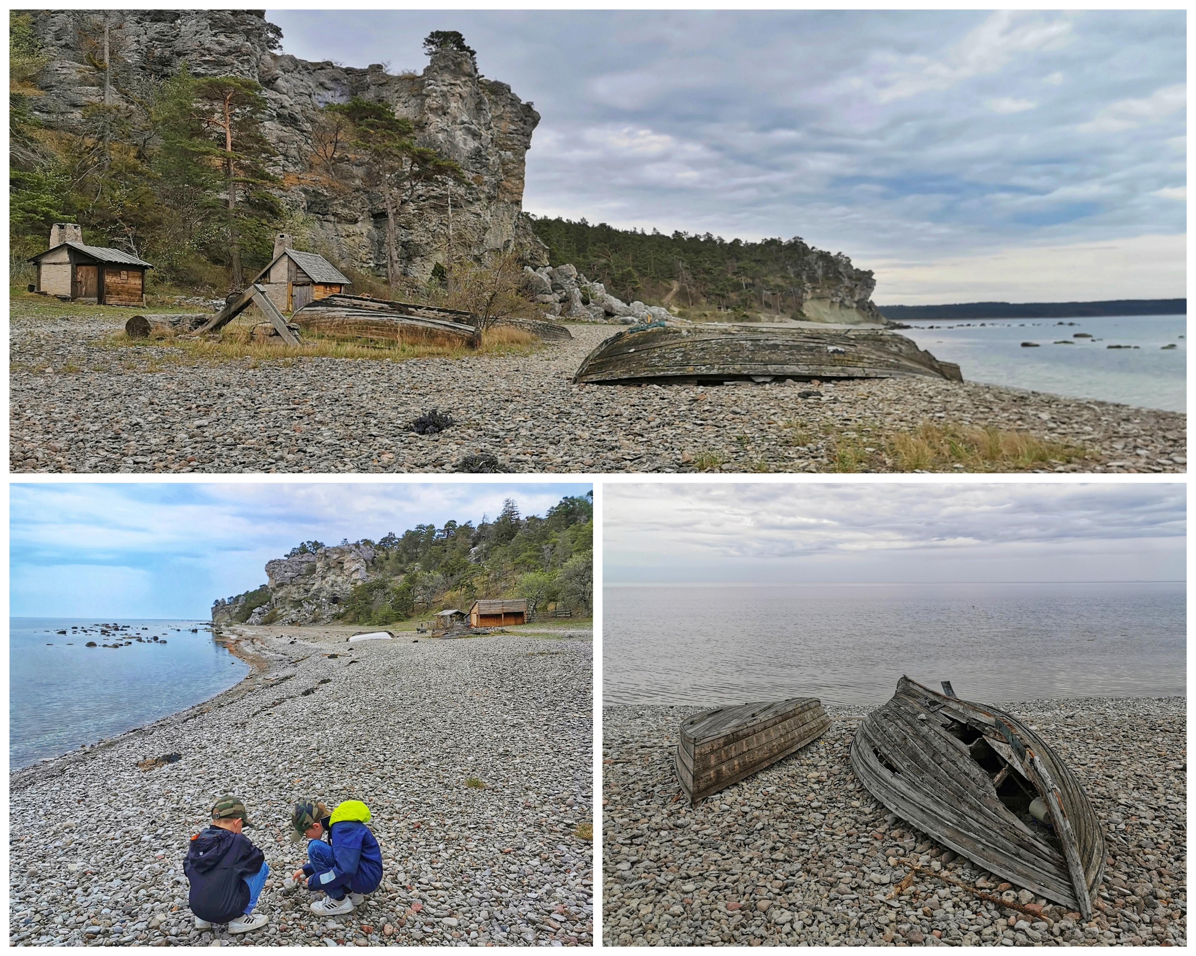 Leta fossil Gotland